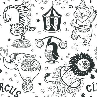 Cirkus obrázky